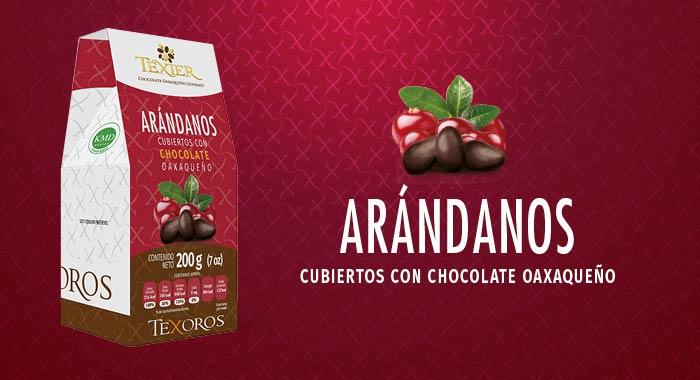 Arándanos cubiertos con delicioso Chocolate Gourmet de Oaxaca Texier